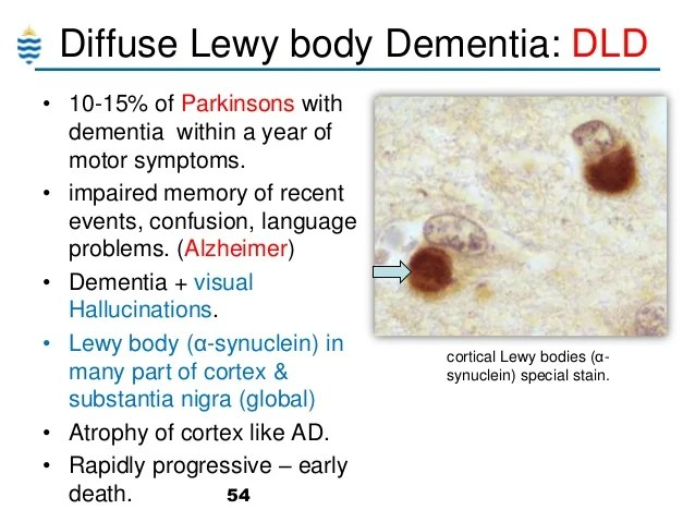 Diffuse Lewy Body Syndrome
