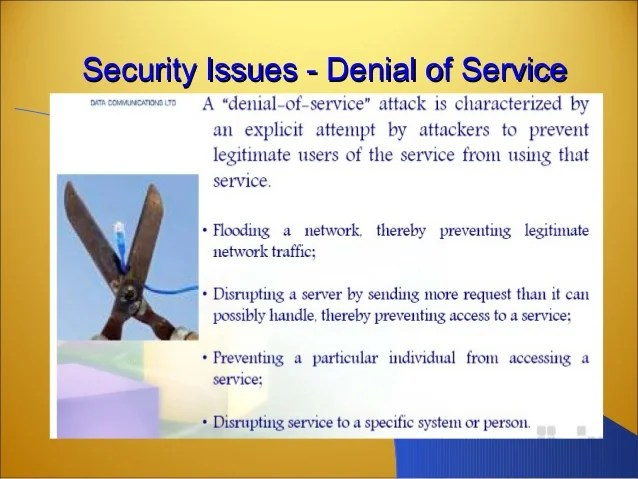 Security Issues What