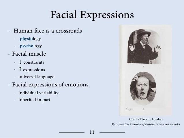 Darwin Theory Emotions Psychology