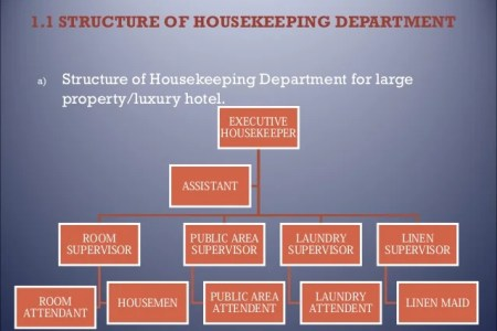 Organizational hierarchy of housekeeping department full hd maps jpg example figure accounting department organization planning and organizing the housekeeping department ppt video housekeeping structure housekeeping thecheapjerseys Images
