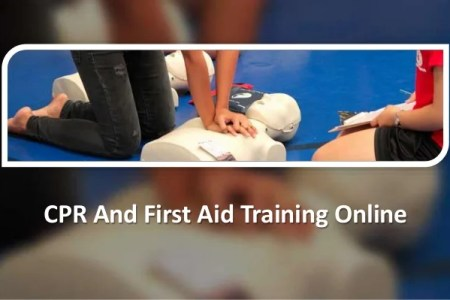 Free Resume Sample » cpr first aid certification online | Resume Sample