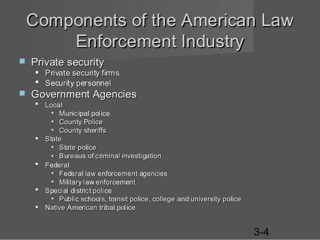Private Security Vs Public Policing