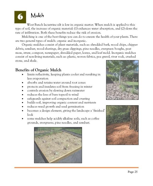 Benefits Mulching Leaves