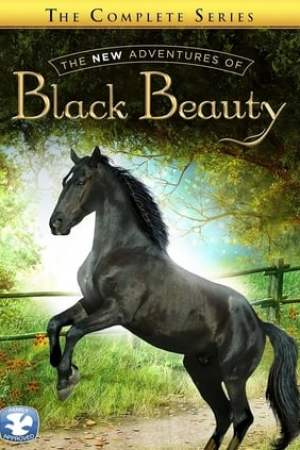 The New Adventures of Black Beauty (1990)