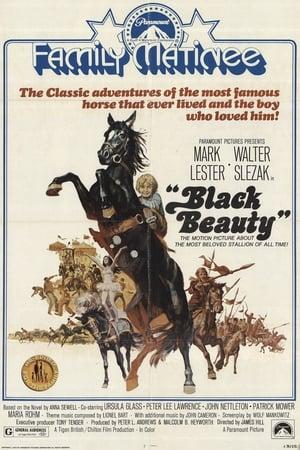 Black Beauty (1971)
