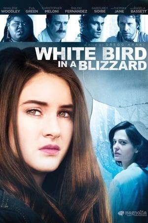White Bird in a Blizzard (2014)