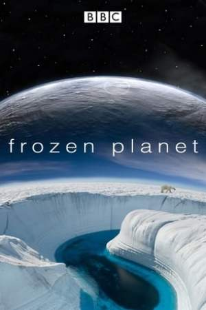 Frozen Planet (2011)