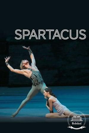 Bolshoi Ballet: Spartacus (2013)