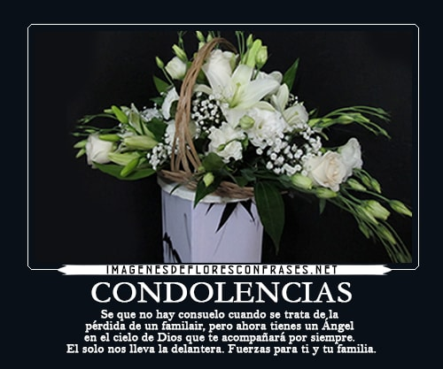 Imagenes De Pesame Y Condolencias