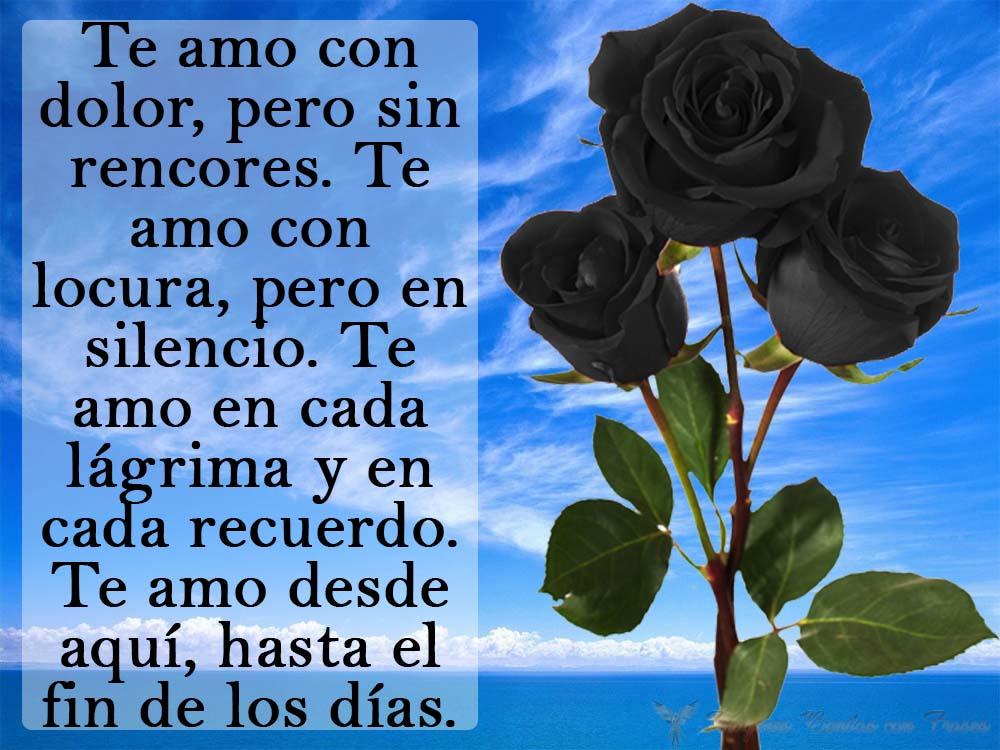 Imagenes De Rosas Negras Con Frases Tristes