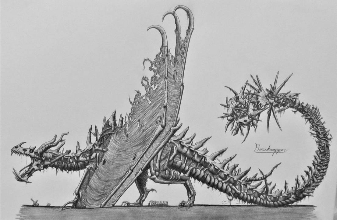 How To Train Your Dragon: Boneknapper by AcroSauroTaurus ...