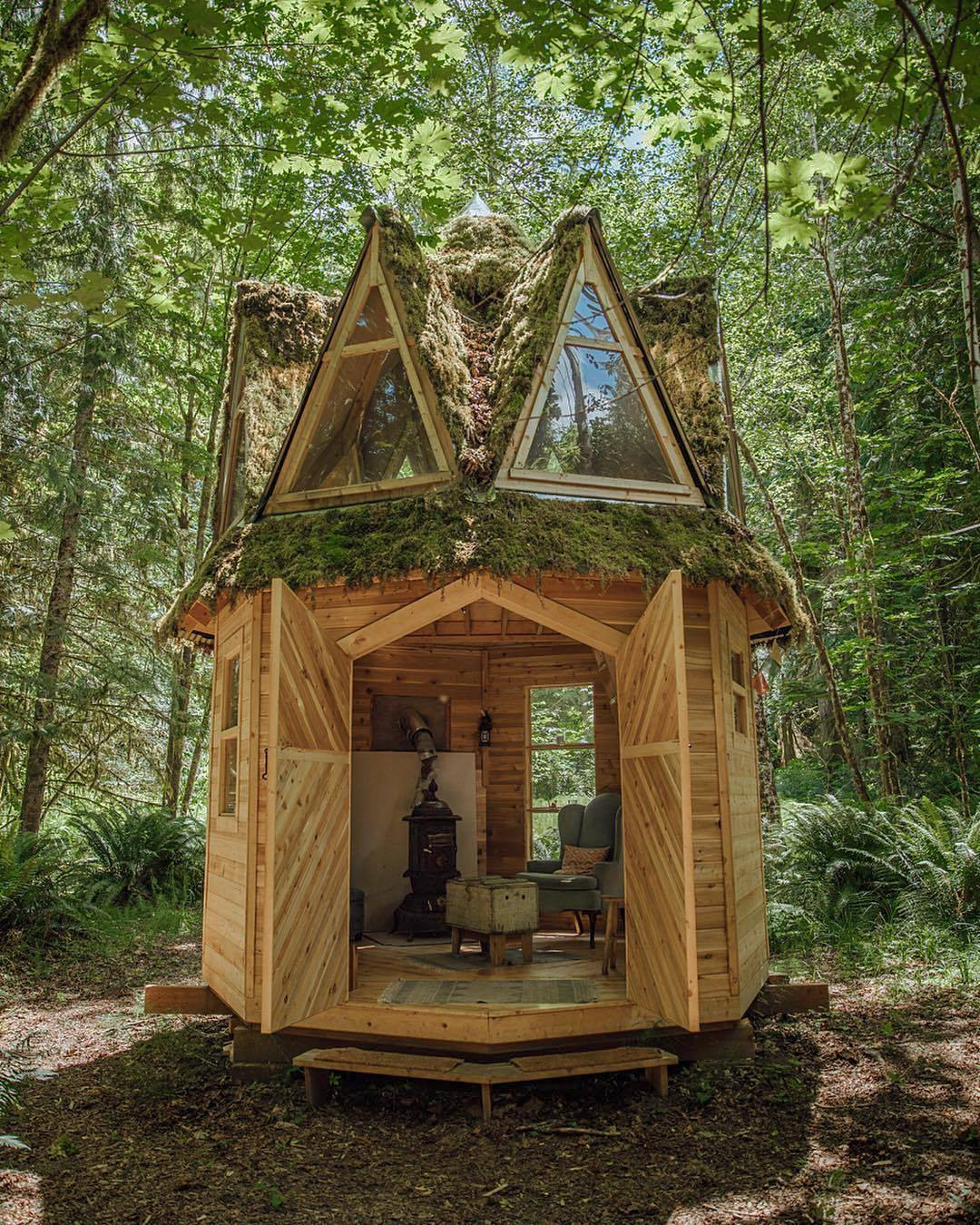 Gallery Of This Moss Covered Octagonal Micro Cabin
