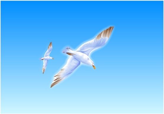 Outdoor Decor Bird Seagull