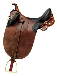 Global Online Store Sports Amp Outdoors Equestrian Sports