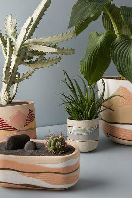 Tall Terracotta Garden Pots