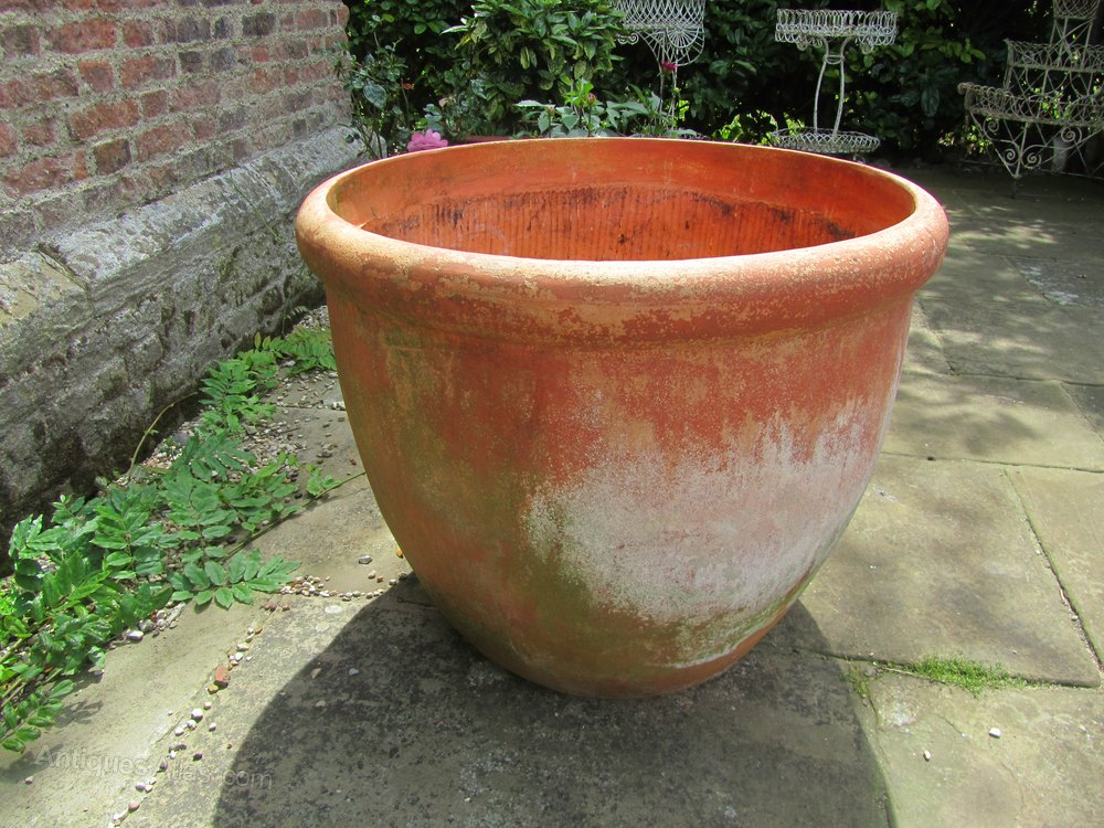 Terracotta Pots Prices