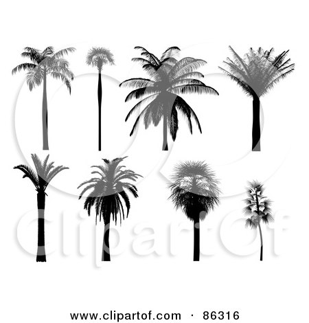 Royalty Free Rf Clipart Of Tropical Plants Illustrations Vector Graphics 1