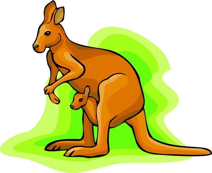 Riding Cartoon Kangaroo