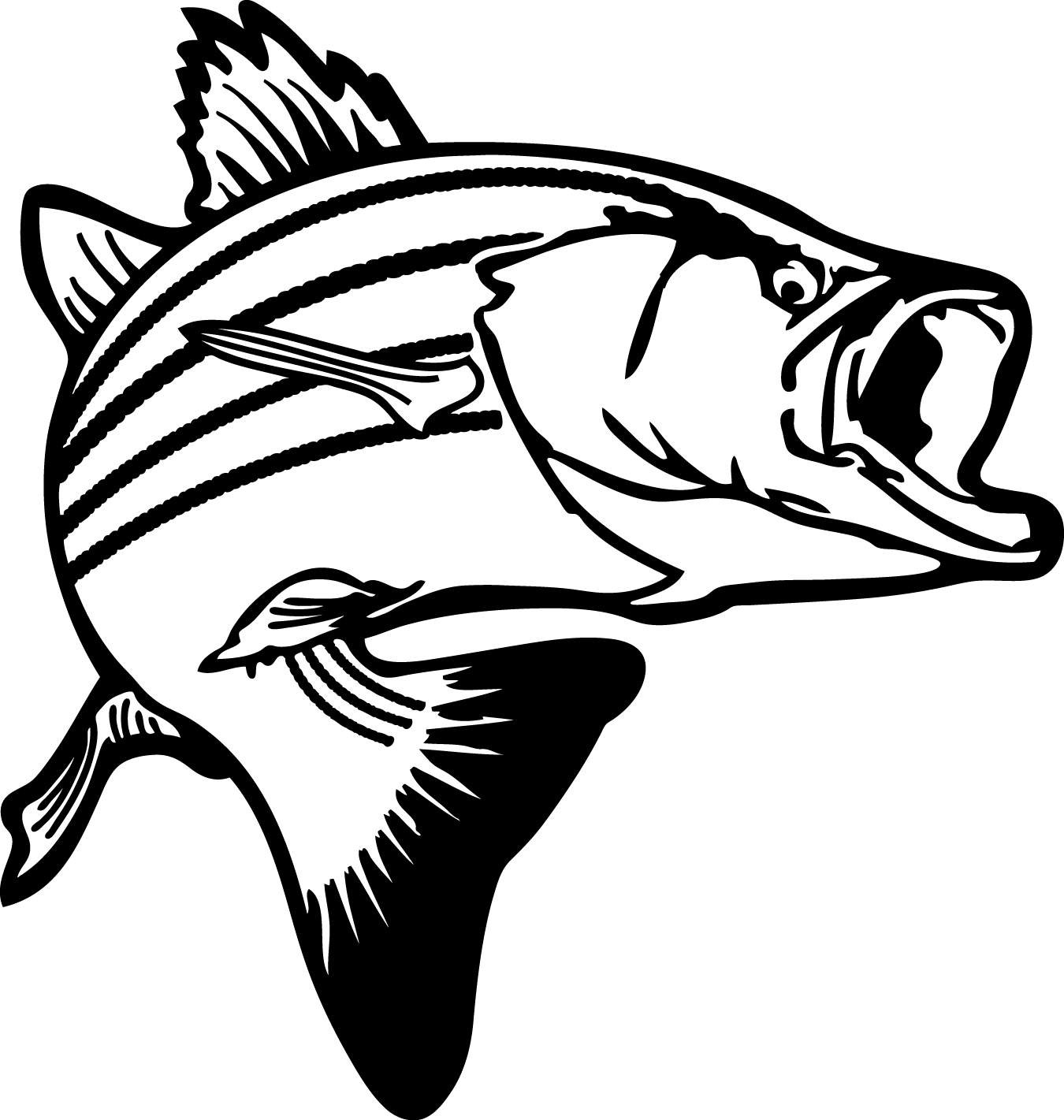 Bass Fish Coloring Pages Clipart Panda Free Clipart Images