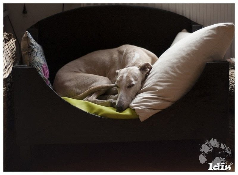 The Whippet Bed 183 A Pet Bed 183 Sewing And Woodwork On Cut
