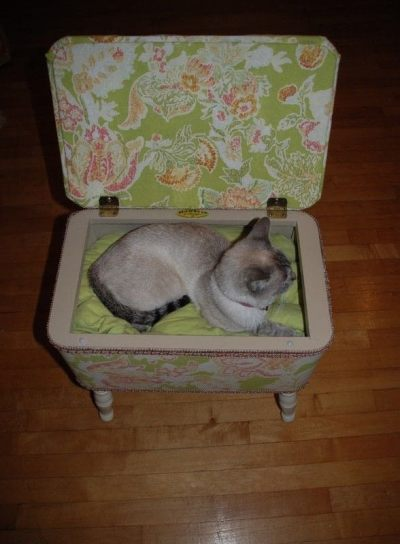 Homemade Cat(Or Dog) Bed · How To Make A Pet Bed ...
