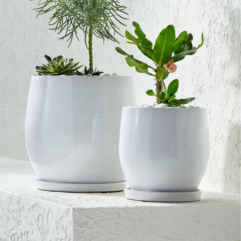 Campana White Planters Crate And Barrel