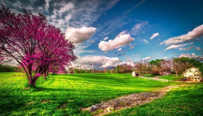 31+ HD Spring Wallpapers, Backgrounds, Images | Design ...
