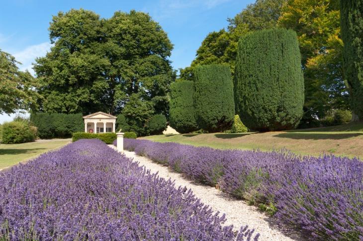 17 Lavender Garden Designs Ideas Design Trends