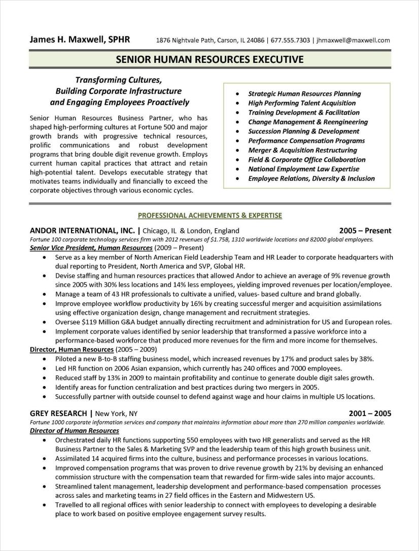 Executive Summary Resume Examples