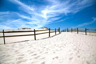 Island Beach State Park New Jersey Photograph by Christy ...