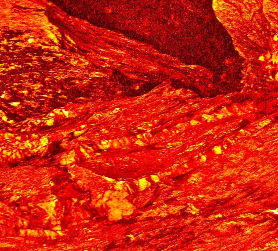 Large Lava Rock Sale