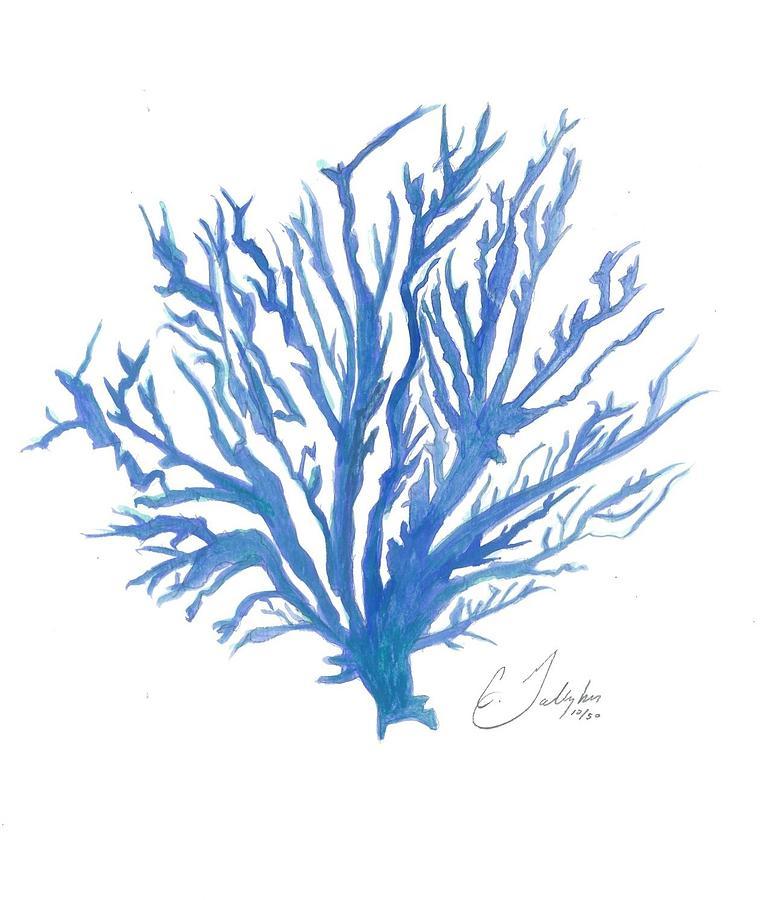 Blue Coral Wall Art