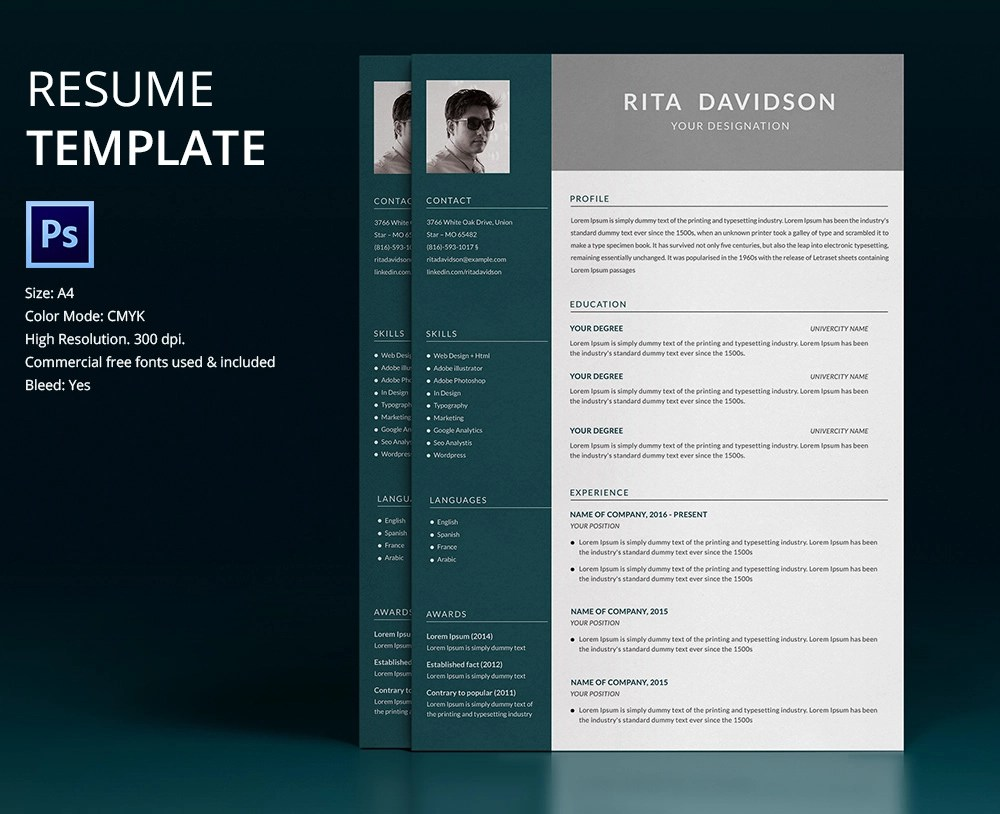 Resume Templates To Download  Resume Templates Download Create Your     Resume Template Designs Freecreatives