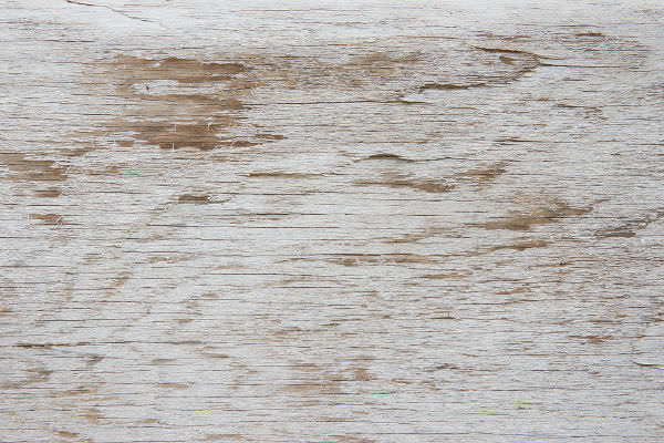 White Painted Wood Texture Seamless