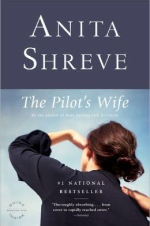 The Pilot's Wife pdf books