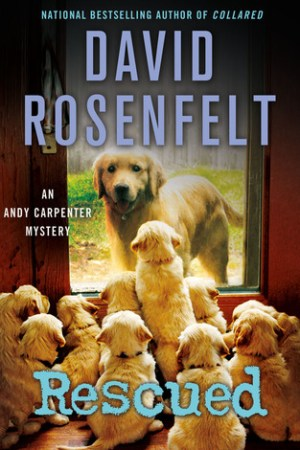 Rescued (Andy Carpenter, #17) pdf books