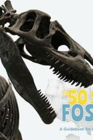The 50 State Fossils: A Guidebook for Aspiring Paleontologists