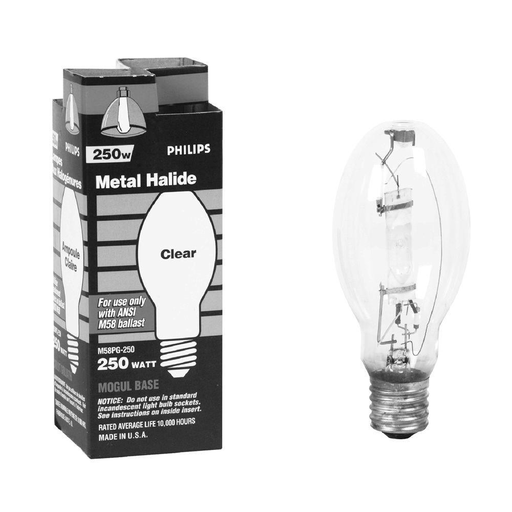 T8 Long Incandescent Light Bulbs