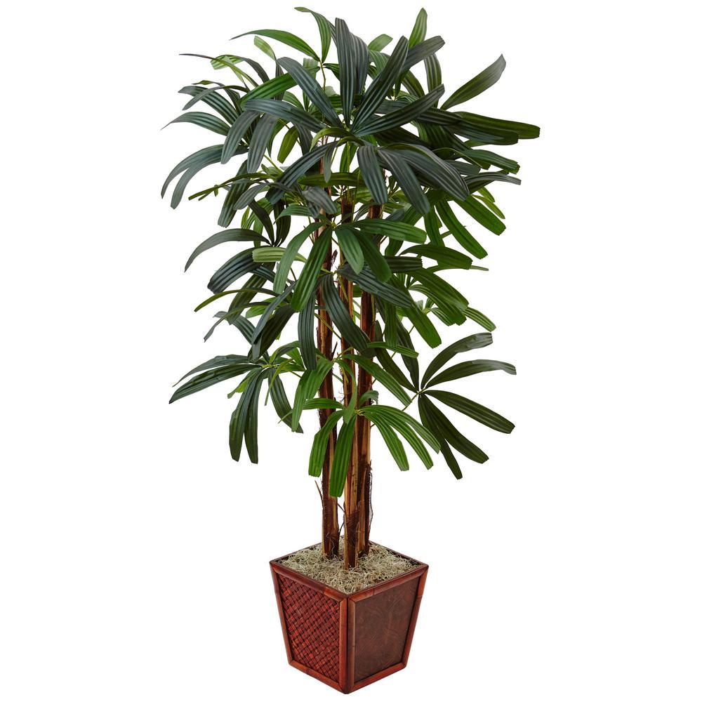 Tall Planter Ideas