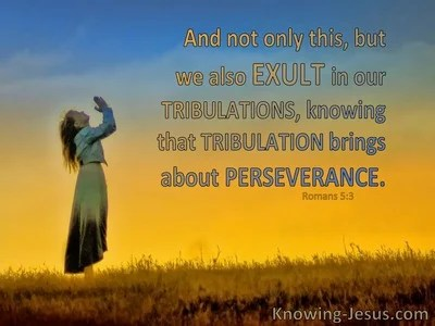 19 Bible verses about Perseverance
