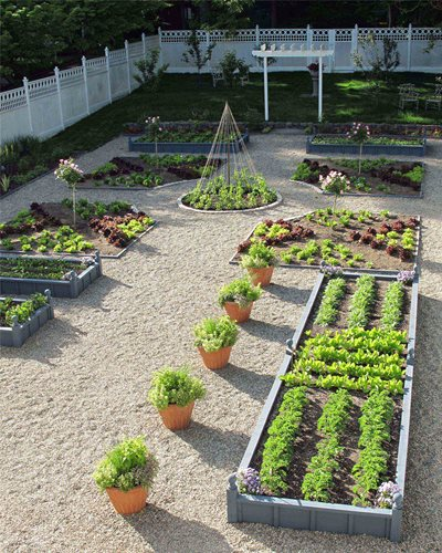 Kitchen Garden Design Pictures