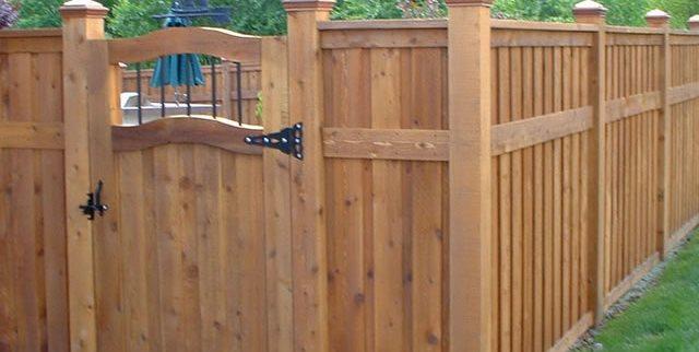 Backyard Gate Ideas