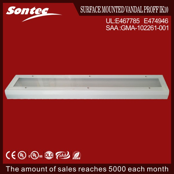 Explosion Proof Fluorescent Linear