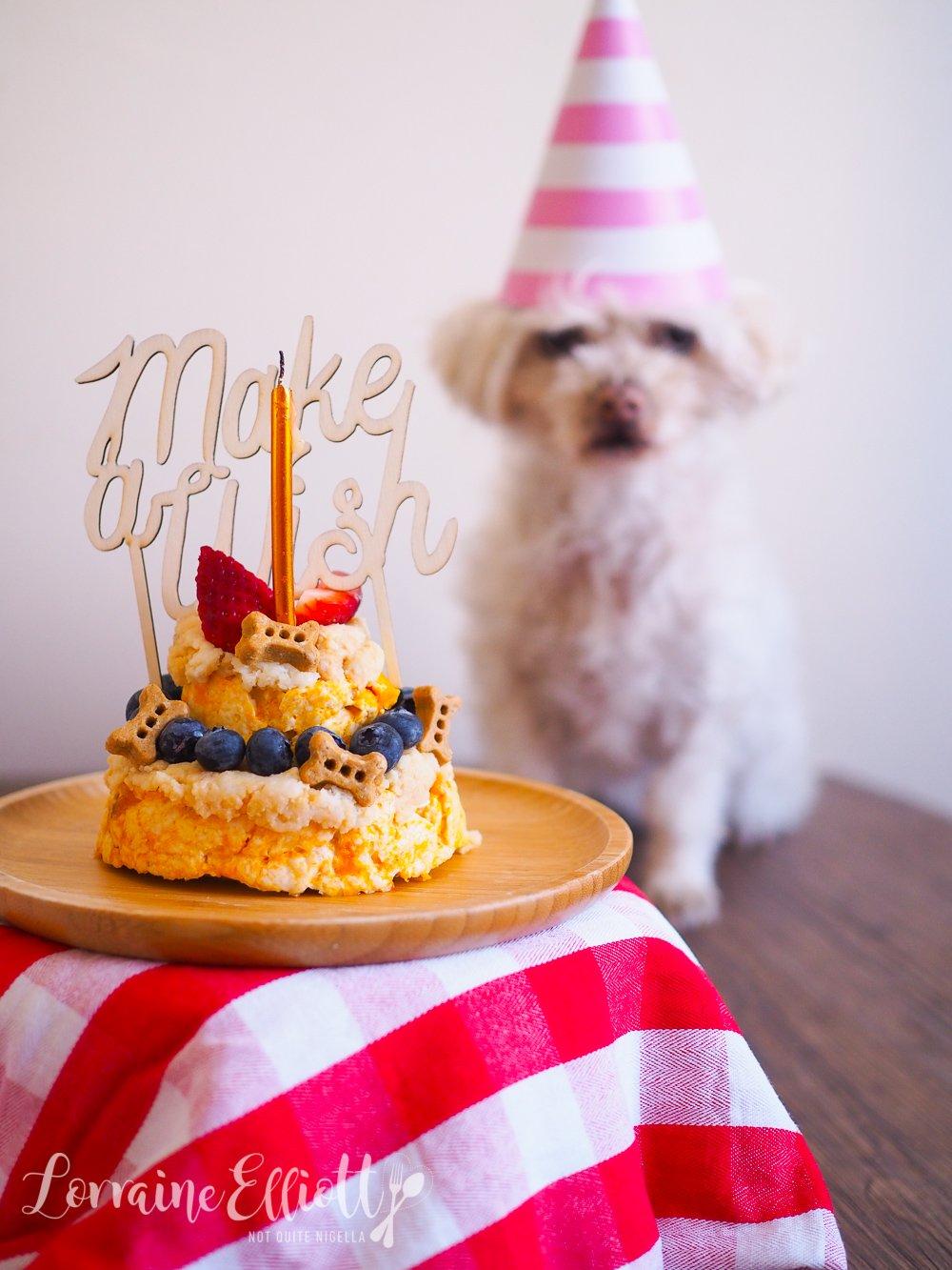 Easy Dog Birthday Cake Not Quite Nigella