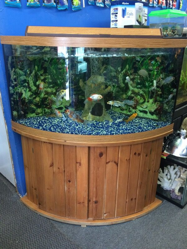 92 Gallon Corner Bow Front Aquarium Fish Tank For Sale In