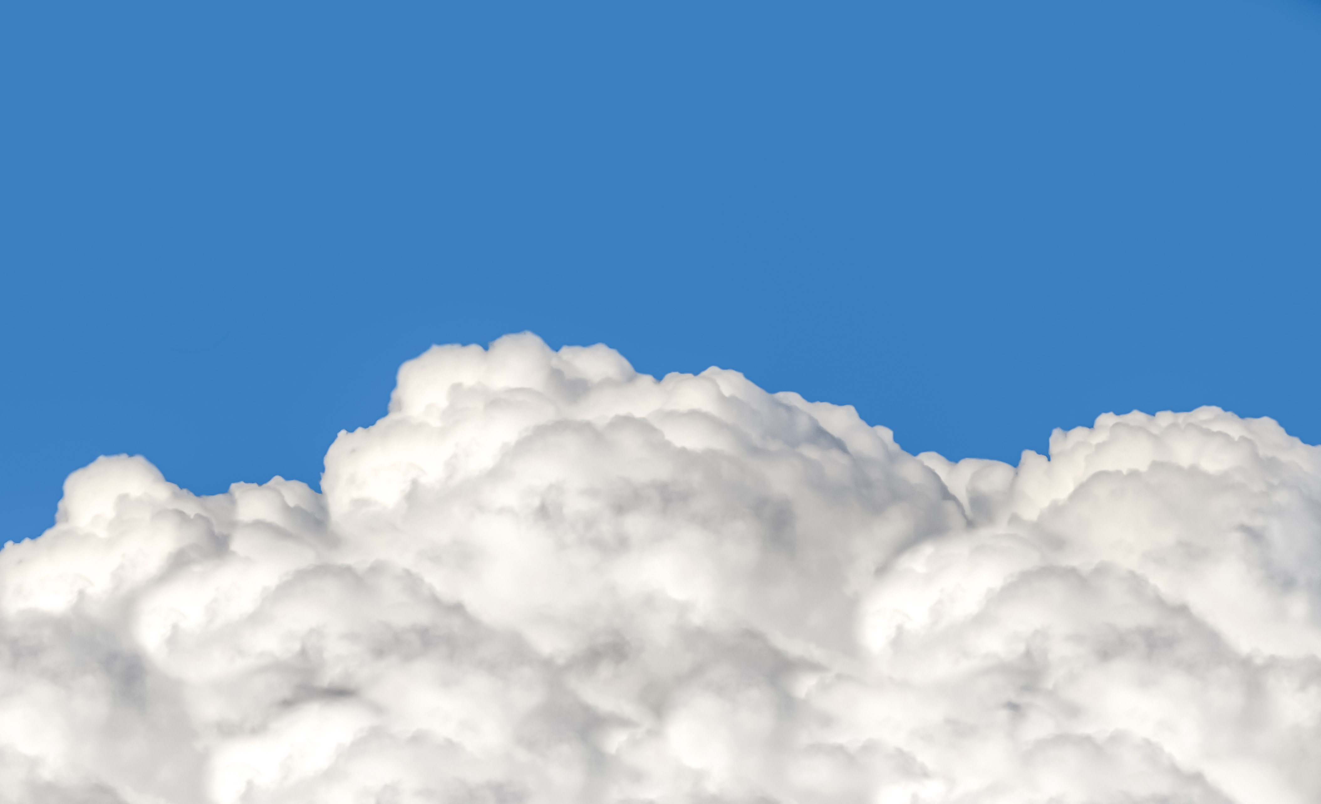 Windows Profile Picture