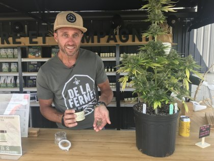 The Inexperienced Leaf firm desires to democratize hemp