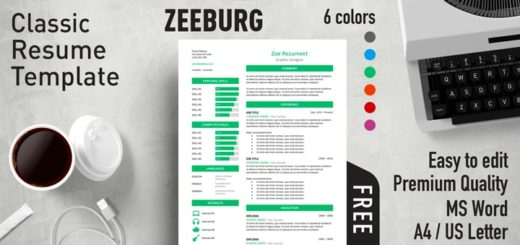 Free Effective Resume Templates for MS Word   Rezumeet Zeeburg     Classic Resume Template
