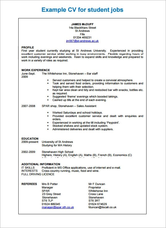 9 Sample Professional Cv Templates Download For Free