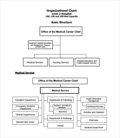 Sample Hospital Organizational Chart - 9+ Documents in PDF